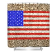Concrete Flag Shower Curtain