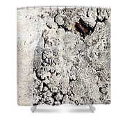 Concrete Texture Shower Curtain