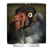 Condor 1 Shower Curtain