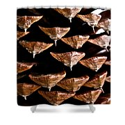 Cone Close Up Shower Curtain
