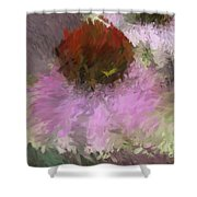 Cone Of Beauty Art Shower Curtain