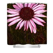 Coneflower And Dusty Miller Hdr Shower Curtain