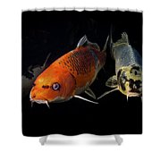 Confrontation Of 3 Koi Shower Curtain