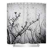 Confusing In The Snow Shower Curtain by Taylan Apukovska