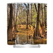 Congaree National Park Shower Curtain