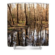 Congaree Reflections Shower Curtain