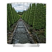 Conifer Lined Water Feature Shower Curtain