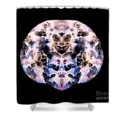 Conjured Dragons Shower Curtain