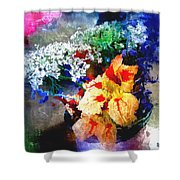 Conjuring Claude Monet Shower Curtain