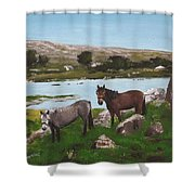Connemara Ponies Shower Curtain