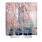 Conservatory  In Spring Shower Curtain