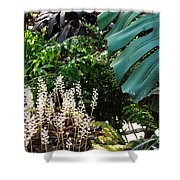 Conservatory Leaves Shower Curtain