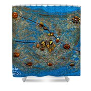 Constellation Of Taurus Shower Curtain