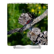 Consumate Romantic Shower Curtain