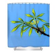 Consumer Grade Tropics Shower Curtain