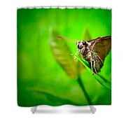 Contemplating Life Shower Curtain