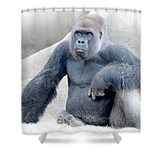 What's Your Problem? Shower Curtain