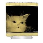 Contemplative Cat   No 5 Shower Curtain