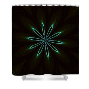 Contemporary Teal Floral On Black Shower Curtain