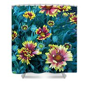 Contrasting Colors Orignial Shower Curtain