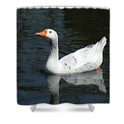 Contrasting Goose Shower Curtain