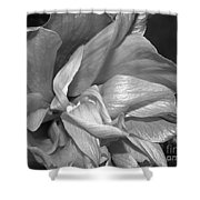 Contrasting Hibiscus Shower Curtain