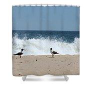 Conversation On The Beach Shower Curtain