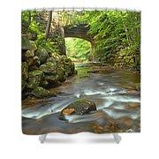Cook Forest Stream Under The Bridge Shower Curtain
