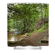 Cook Forest Toms Run Steps Shower Curtain