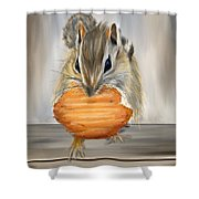 Cookie Time- Squirrel Eating A Cookie Shower Curtain