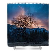 Cooks Meadow Oak At Sunset Shower Curtain