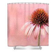 Cool And Pink Shower Curtain