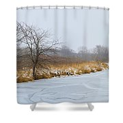 Cool Dreams Winter Shower Curtain