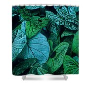 Cool Leafy Green Shower Curtain