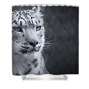 Cool Leopard Shower Curtain