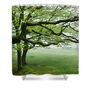 Cool Misty Day At Blackbury Camp Shower Curtain