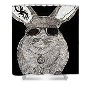 Cool Rabbit Shower Curtain