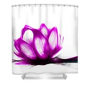 Cool Sketch 16 Shower Curtain