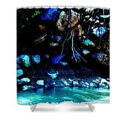 Coal Creek Dixie National Forest Utah Shower Curtain