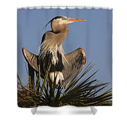 Great Blue Heron Air Conditioning Shower Curtain