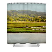 Coos River Shower Curtain