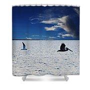 Copano Bay Sunset Flight Shower Curtain