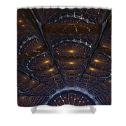 Copper Cathedral Shower Curtain