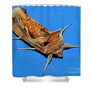 Copper Crest Shield Moth Shower Curtain