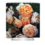 Copperblush Shower Curtain