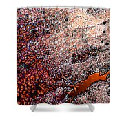 Copperspill Shower Curtain