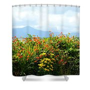 Coppertips On The Dingle Peninsula Shower Curtain