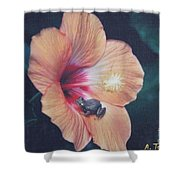 Coqui  Shower Curtain