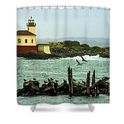 Coquille River Lighthouse And Birds Shower Curtain