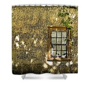 Coquina Door And Window Db Shower Curtain